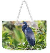 Tri-colored Heron On A Branch  Weekender Tote Bag