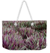 Tricolor Moses In The Cradle Plant Weekender Tote Bag