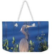 Tricolored Heron In Monet Like Setting Weekender Tote Bag