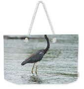 Tricolored..  Weekender Tote Bag