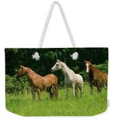 Trio In Spring Weekender Tote Bag