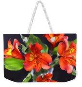 Trio Of Alstroemeria Inca Flowers-4 Weekender Tote Bag