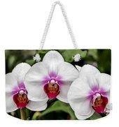 Trio Of Beautiful Flowers Weekender Tote Bag