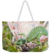Trioceros Jacksonii - Jackson's Chameleon - Maui Hawaii Weekender Tote Bag