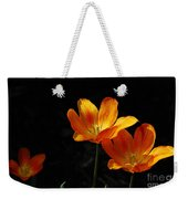 Triples Weekender Tote Bag by Lois Bryan