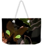 Tropical Buterfly Weekender Tote Bag