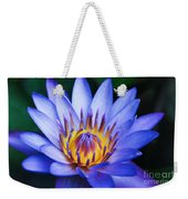 Tropical Dreams Weekender Tote Bag by Sharon Mau