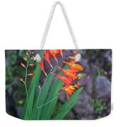 Tropical Orange Lily Weekender Tote Bag