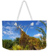 Tropical Plants In A Preserve In Florida Weekender Tote Bag