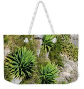 Agave Plants On Rocky Slope Weekender Tote Bag