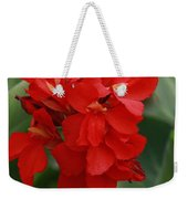 Tropical Red Canna Lilly Weekender Tote Bag
