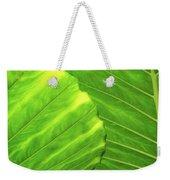 Tropical Vibrant Green Weekender Tote Bag