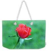 Tropicana Weekender Tote Bag