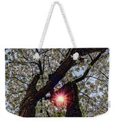 Trunk Of A Cherry Tree Blooming With White Flowers Weekender Tote Bag