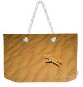 tufted ghost crab Ocypode cursor on sand Weekender Tote Bag