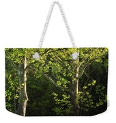 Branches Of Lovely Light Weekender Tote Bag