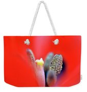 Tulip At Amatzia Forest - 1 Weekender Tote Bag