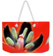 Tulip At Amatzia Forest - 5 Weekender Tote Bag