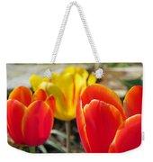 Tulip Celebration Weekender Tote Bag by Karen Wiles