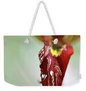 Tulip In Blossom 1 Weekender Tote Bag