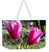 Tulip Tree Blossoms Weekender Tote Bag