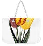 Tulip (tulipa Gesneriana) Weekender Tote Bag