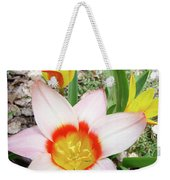 Tulips Artwork 9 Spring Floral Pink Tulip Flowers Art Prints Weekender Tote Bag