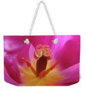 Tulips Artwork Pink Purple Tuli Flower Art Prints Spring Garden Nature Weekender Tote Bag