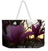 Tulips At Sunset I Weekender Tote Bag
