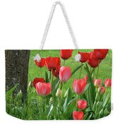 Tulips Flowers Art Prints Spring Tulip Flower Artwork Nature Art Weekender Tote Bag