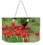 Tulips In Spring 3 Weekender Tote Bag
