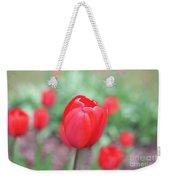 Tulips In Spring 4 Weekender Tote Bag