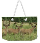 Turning Our Backs To You Weekender Tote Bag