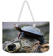 Turtle And The Hippo Weekender Tote Bag