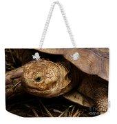 Turtle Closeup Weekender Tote Bag