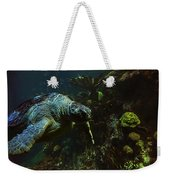 Turtle Crawl Weekender Tote Bag