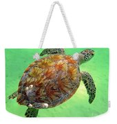 Turtle Day In Titusville,florida Weekender Tote Bag