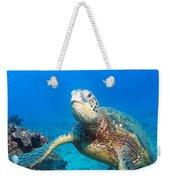 Turtle Portrait Weekender Tote Bag