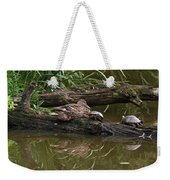 Turtles And A Duck Weekender Tote Bag