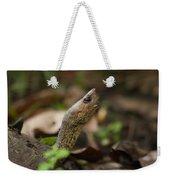 Turtle's Neck  Weekender Tote Bag