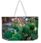 Twilight Prickly Pear Weekender Tote Bag