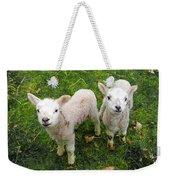 Twins - Spring Lambs Weekender Tote Bag