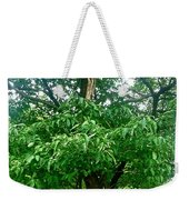 Twisted And Broken But Still Standing Weekender Tote Bag