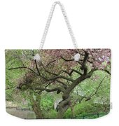 Twisted Cherry Tree In Central Park Weekender Tote Bag