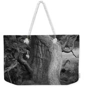Twisted Old Tree Weekender Tote Bag