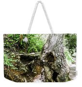 Twisted Tree Smoky Mountains Weekender Tote Bag
