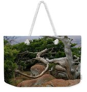 Twisted View Weekender Tote Bag