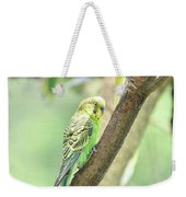 Two Adorable Budgie Parakeets Living In Nature Weekender Tote Bag