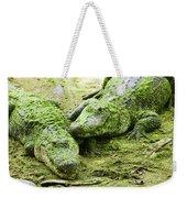 Two Alligators Weekender Tote Bag