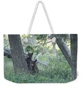 Two Bear Cubs Weekender Tote Bag
